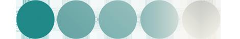 Comapny Logo